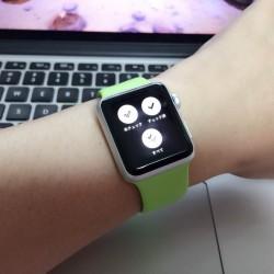 ピクトチェック(PictCheck)で、Apple Watchにおける表示項目を選べるようになりました!