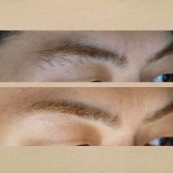 【メンズ】アナスタシアのサロンで眉の形を整えてもらった 8回目