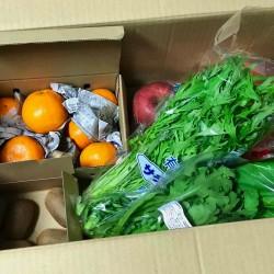 「季節の野菜を直接配送!季節のスムージー」を買ってみた